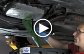 Bavarian Autosport BMW Transmission Fluid DIY Video