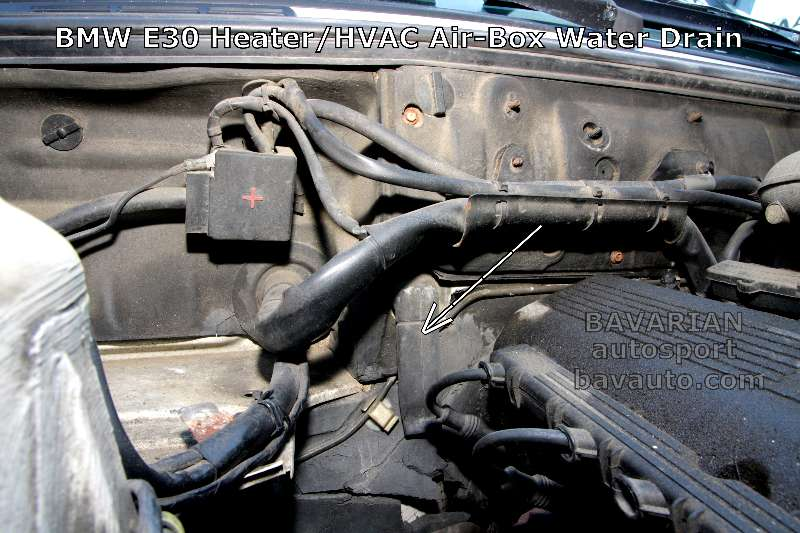 Bmw E30 Damp Carpet Water Leak 325e 325i And Other
