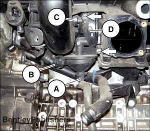 I additionally Oem Bmw 5 Series E60 E61 Driver Side Window Switch 6939112 B137 also 330xi Fuel Filter Diagram moreover Kia Sedona 2005 Tail Light Wiring Diagram together with 1999 Yamaha Big Bear 350 4x4 Carburetor. on fuse box in bmw z4